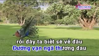 Karaoke NAM AI 8 CÂU  Kép