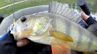 Рыбалка на щучьем озере в пермском крае