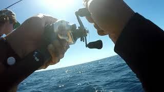 Open party trip aboard the Liberty (fishermans landing) yellowfin tuna