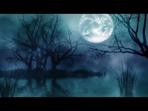 Richard Noll ~ Nightfall Video | Hauntingly Beautiful Instrumental Music