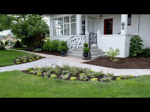 Planting a Beautiful Combination of Plants in Our Front Entryway! 😍🌿// Garden Answer