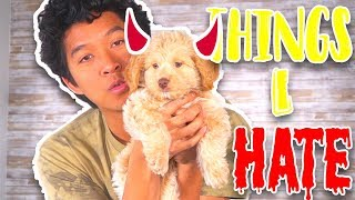 7 Things I Hate About MY New Puppy