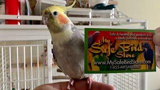 My Safe Bird Store Unboxing- DIY Bird Toy Supplies