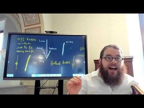 Szukka 12 – Napi Talmud 562 – A kóser szchách