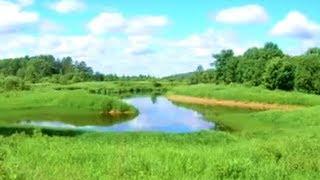 Рыбалка на реке плюсса в псковской области