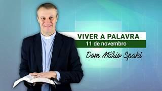 O Evangelho do dia com Dom Mário Spaki 11-11-2019