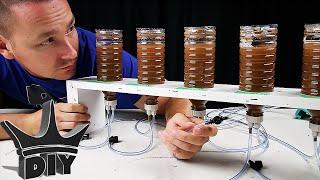 HOW TO: DIY Brine Shrimp Hatchery