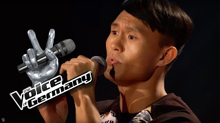 Talking to the Moon - Bruno Mars   Dehua Hu Cover   The Voice of Germany 2016   Audition