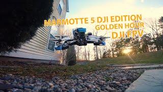 Golden HR FPV / Armattan Marmotte 5 DJI Edition / DJI FPV