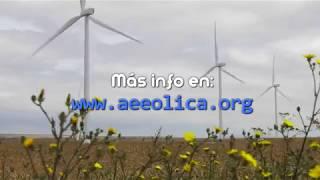 Curso de Técnico de Mantenimiento de Parques Eólicos de AEE