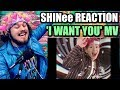SHINee 샤이니 'I Want You' MV | I'M 100% A SHAWOL NOW! | REACTION!!