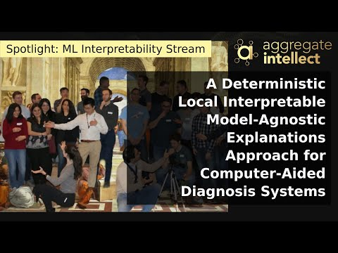 A Deterministic Local Interpretable Model-Agnostic Explanations Approach for Computer-Aided Diagnosis Systems