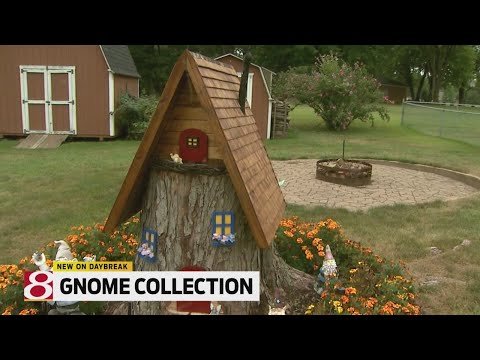 Gnome Collection