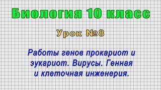 Биология 10 класс Урок 8