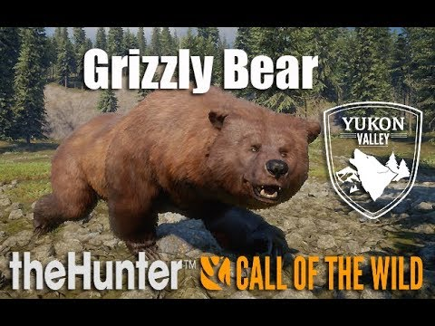 theHunter: Call of the Wild - Yukon Valley - Grizzly Bear First Hunt & ATTACK !