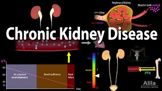 Chronic Kidney Disease, Animation