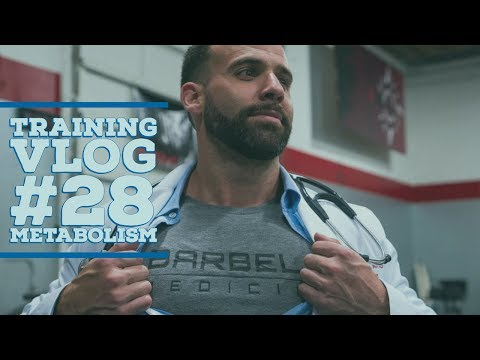 Training VLOG 28: The Science of YOUR Metabolism