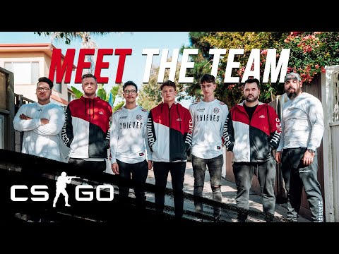 100 Thieves Introduction