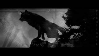 [New Moon] Wolf's Pack - Ignition |Jacob Tribute|