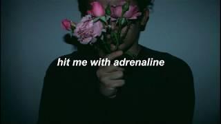Adrenaline  Simple Creatures Lyrics