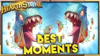 Best Moments 84 | Hearthstone Gadgetzan
