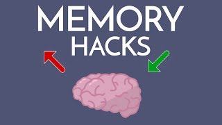 Most Effective Way to IMPROVE MEMORY (& Memorize ANYTHING)