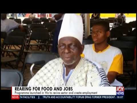 Rearing For Food And Jobs - News Desk on JoyNews (25-6-19)