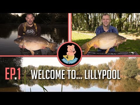 Customer video: France Carp Fishing 2017, Pt 1, Apr 2019