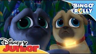 Bingo y Rolly: HALLOWEEN Momentos Mágicos - Regreso al huerto de calabazas | Disney Junior Oficial