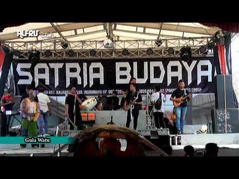 #SATRIA BUDAYA#GULA WATU#BPK BUDIANTA-IBU SITI AISAH#SUMURWEDI-SUMBERMULYA-HAURGELIS-IM#140919#
