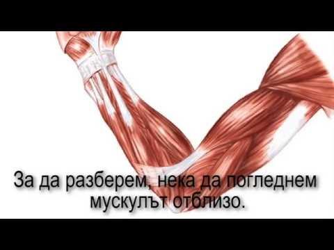 Заглавие мехлеми за лечение на рани при захарен диабет