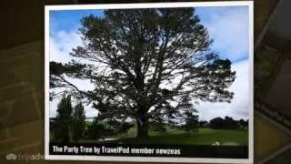 preview picture of video 'Hobbiton Newzeas's photos around Matamata, New Zealand (new zealand travel blog wwoof matamata)'
