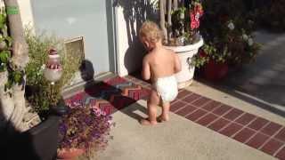 Die besten 100 Videos Kinder erschrecken sich von ihrem eigenen Schatten! :D