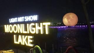 ( KOR / ENG) 江陵鏡浦湖ライトショー