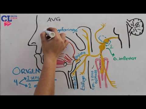 Paciente acerca de las tácticas de tratamiento de la hipertensión