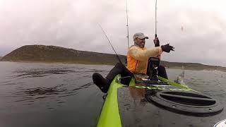 Kaskazi Kayaks & Adventures | Sea Point, Cape Town, Cape Town