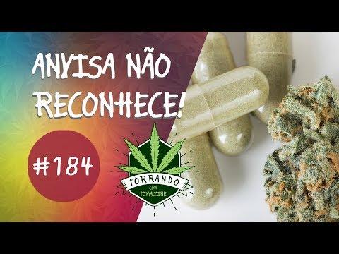 ANVISA não reconhece cannabis medicinal - Torrando com Tomazine #184