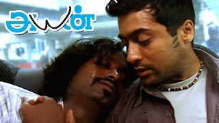 Ayan | Ayan Full Tamil Movie scenes | Jagan tries to Smuggle Drugs | Surya rescues Jagan |Surya film