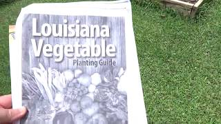July timeline of Louisiana garden zone 9a:  what's in out and new