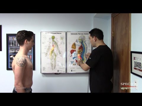 IBS irritable bowel syndrome HELPED by Dr Suh Gonstead Chiropractic