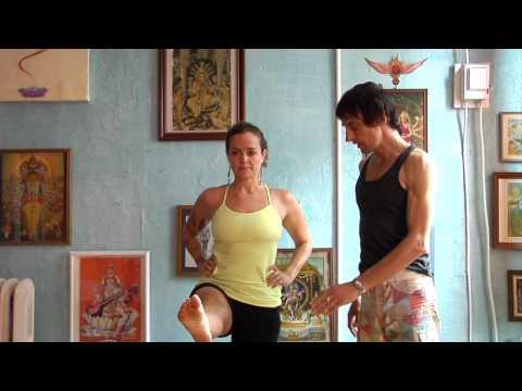 asana essentials primary postures  love yoga anatomy