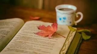Kitap Okuma Müzikleri - 6 /  Music for reading