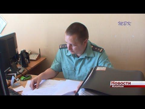 Злостных уклонистов от уплаты алиментов назовут «безвестно отсутствующими» и аннулируют документы