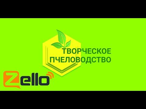 """Эфир 19.12.19 Z-рация на канале """"Творческое пчеловодство"""""""