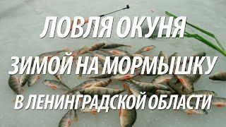 Красногвардейское озеро ленинградская область рыбалка
