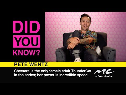 Pete Wentz Thought Guns N' Roses Were Girls: Did You Know?