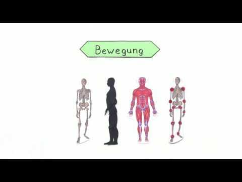 Osteochondrose l1 s1 Schritt 1