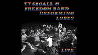 "Ty Segall & The Freedom Band   ""Love Fuzz"" (Advance Of Deforming Lobes)"