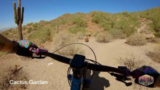 A day of shredding Hawes and the Usery Mountain Trails.