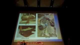 preview picture of video 'סער גנור : שבע עונות חפירה בחירבת קייאפה (מצודת האלה) או שעריים המקראית'